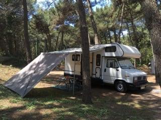 Camper Vintage SafariWays