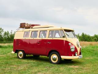 Bus Florida – Volkswagen T1, 1966