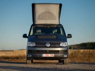 VW California - Ocean - DSG