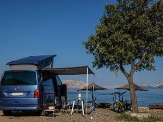 VW California T6 ocean