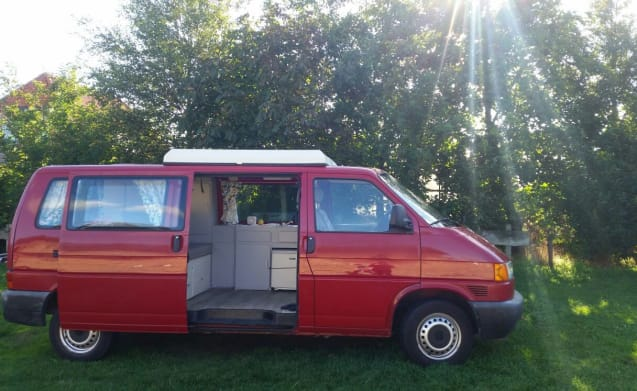 Dollie – Camper bus Volkswagen T4