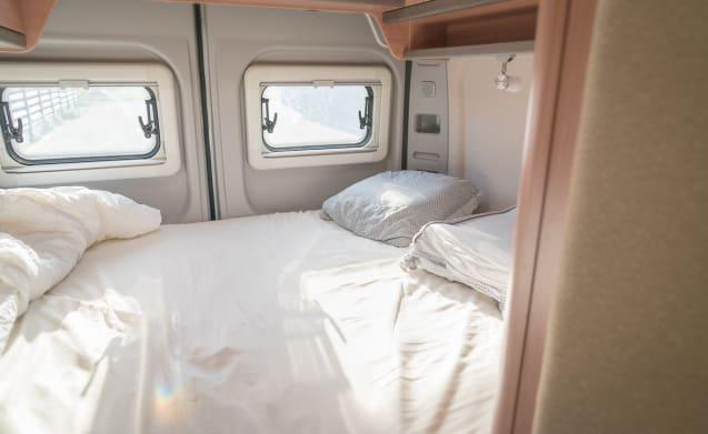 Beautiful Camper, Compact & Quality. Knaus Boxstar Street