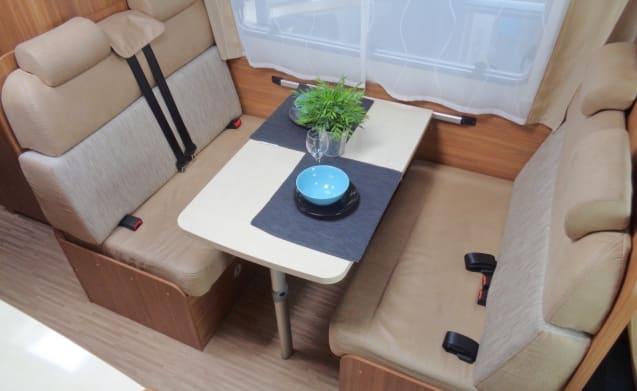 Camper für 6 Personen mit Etagenbett / CF6