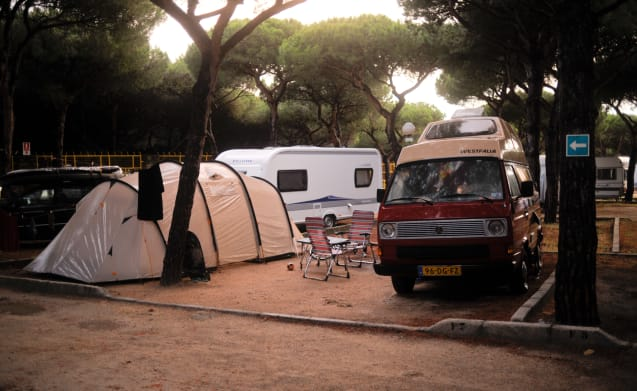 Nizza komplette VW T3 Westfalia Joker Club Verleih