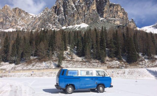 Wild – Hippy Van 1989 with kitchen, WC, external shower!