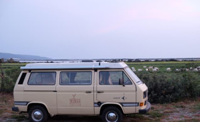 Pipiana – Volkswagen T3 Joker for your holidays in Sardinia