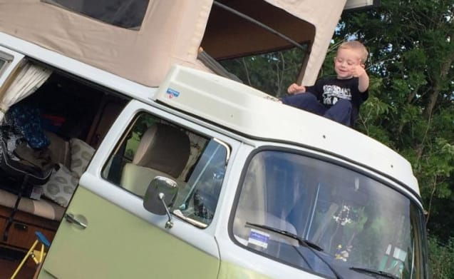 Olive – Sweet Campers - Classic Vw Campervan Hire