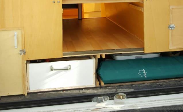 Witte Raaf – Super practical bus camper