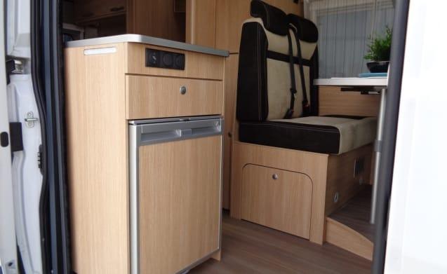 Buscamper voor 2 personen, enkele bedden / SSB3