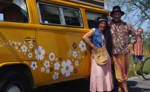 rent an original hippie bus from 1976!