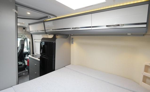 Nieuwe Adria Twin 600 SPT 50 anni di scambio buscamper