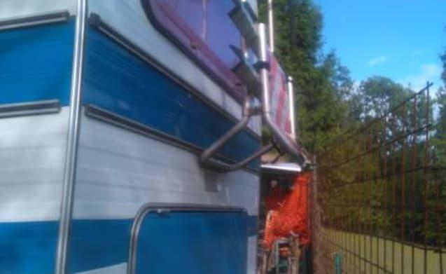 Lumachina inarrestabile – Transit 1980 ... een reis door de tijd