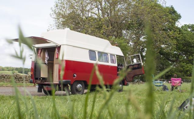 Ruby – Classic 76 Mercedes camper