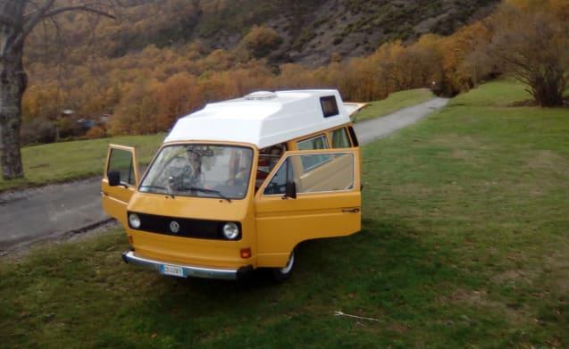 Africa – Vw Van 1981
