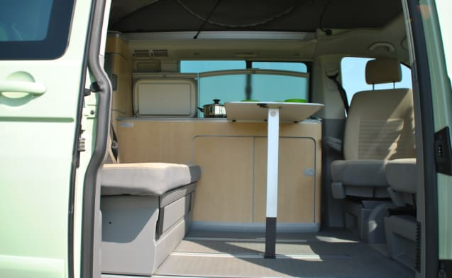 Olive – Olive green compact Volkswagen T5 California - mileage-free