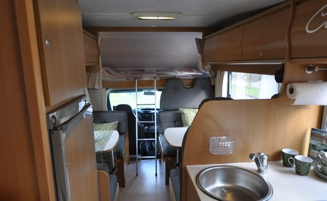 Type 10 – Very spacious and unique family camper