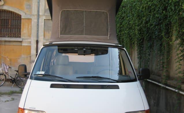 GATTEO – Volkswagen T4 Carthago Malibù