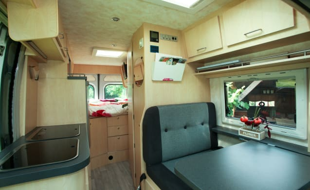 Ducato 2.3L 130PK – Luxury bus camper