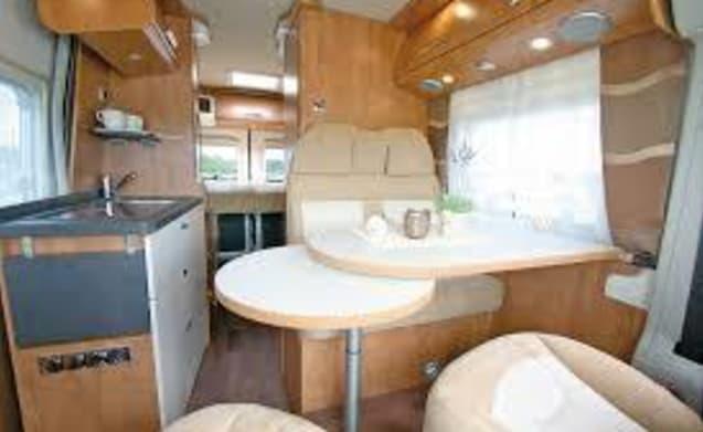 New Carado bus camper 2019
