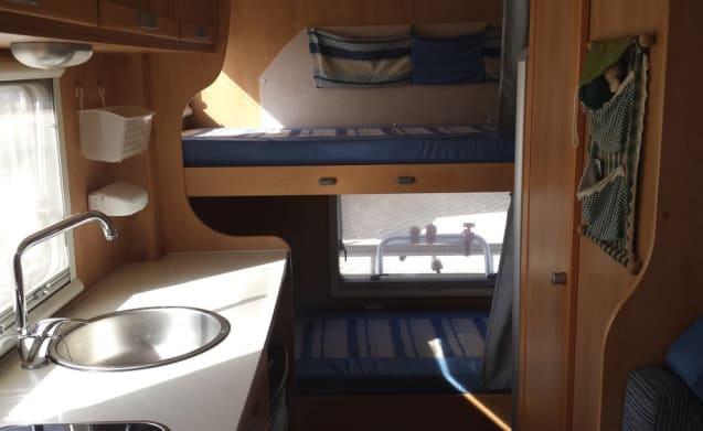campingsport – CAMPER FULL OPTIONAL HOLIDAYS FREE SALENTO