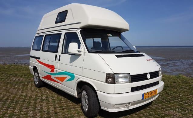 Volkwagen T4 Kalifornien Hoogdak - Zeeland