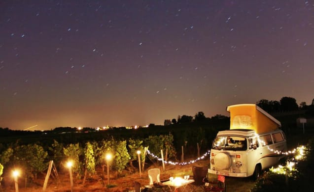 affittare un camper hippy bus westfalia originale !!