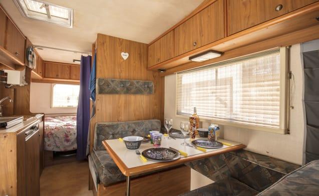 Solid 6-person alcove camper