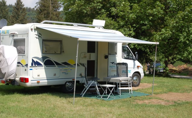 Be surprised by this camper!