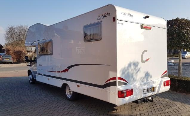 Kees – Carado A464 Alcove Camper