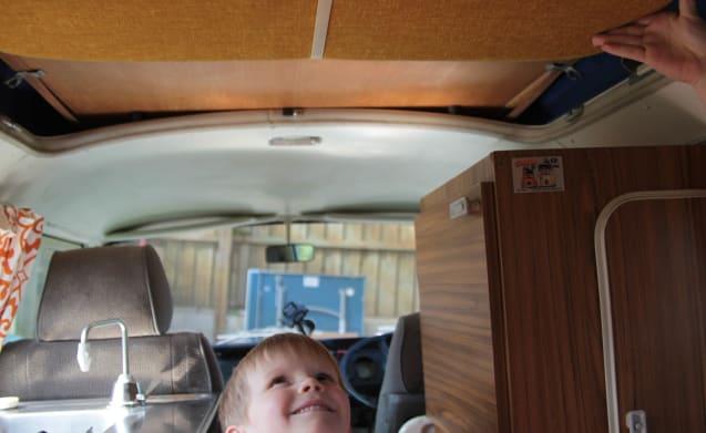 Blossom – Classic VW Camper Van hire in Cornwall