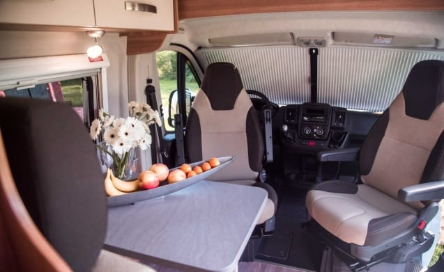 Beautiful new bus camper / SC4