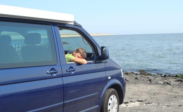 sterke, stoere VW T5 - California buscamper