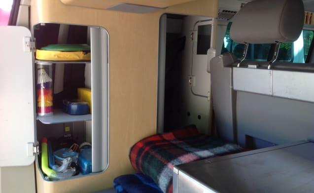 strong, tough VW T5 - California bus camper