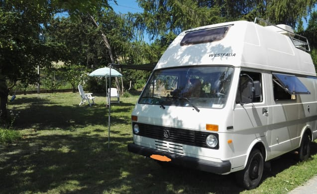 Shantifalia – Westfalia, vintage camper with 6 pax and 4 beds