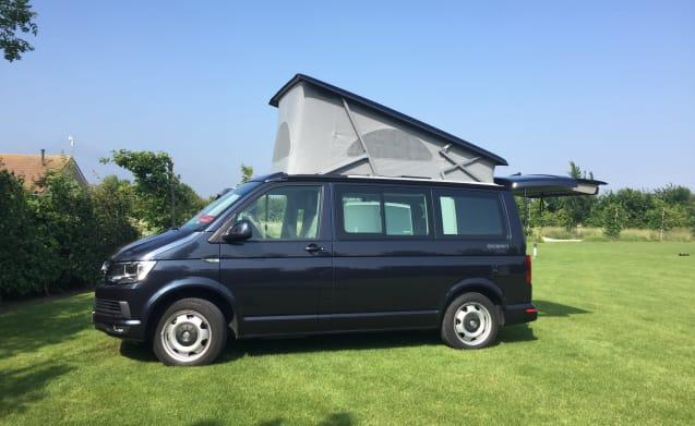 ZupervanZ – compacte VW California Ocean