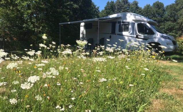Te huur onze nette en complete ingerichte half-integraal camper.