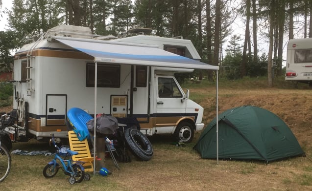 Iveco Magirus 45-10 – Adventurous Camper for summer and winter. Good to unwind!