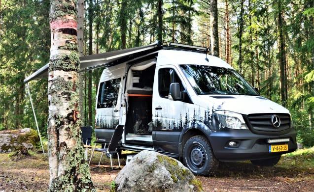 Adventure Van –  Adventure Van