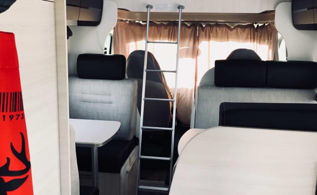 Nieuwe, stijlvolle en comfortabele mobilhome met 6 + 1 slaapplaatsen
