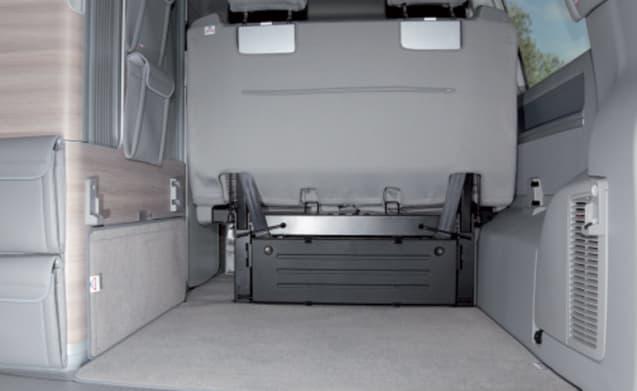 VW California T6 Automatic 4 Berth (Wigan)