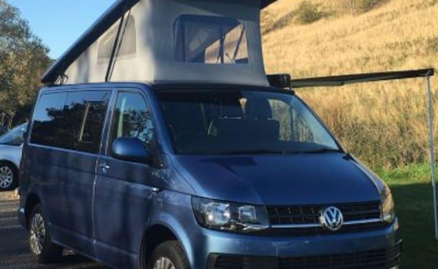 Luxury VW Campervan for your Scottish Adventure