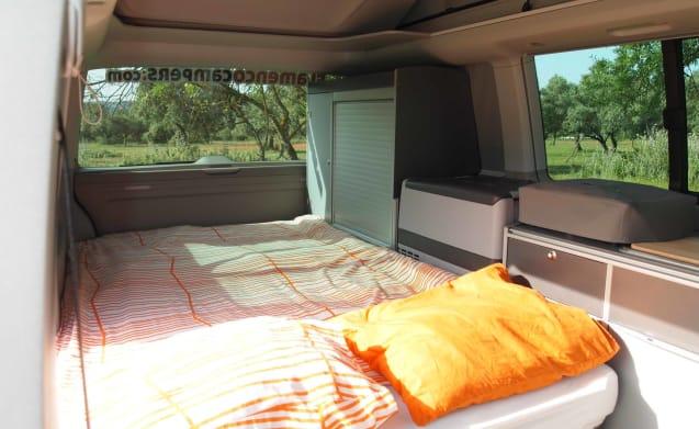 """""""CARMELA"""" VW T6 CALI BEACH CAMPER – Flamenco Campers, Rent a camper, explore Andalusia."""