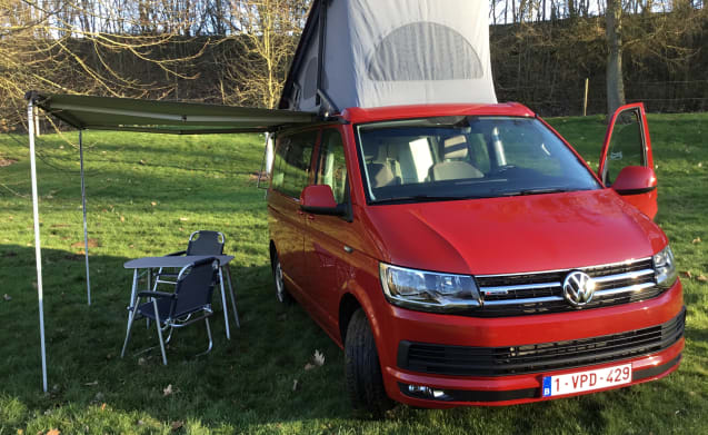 VW California Ocean 4WD, aut., 204 CV - 150kw - acquista l'1 / 2019!