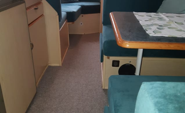 With the dog on holiday in this compact 4-person alcove