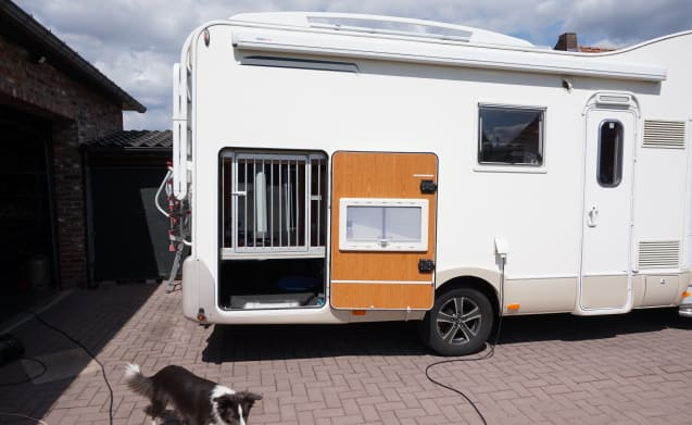 camperverhuur happydog – dog friendly family camper, camper rental happydog