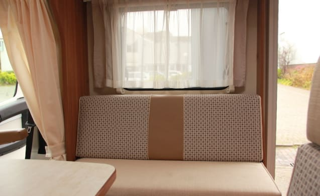 Spacious and luxurious 3-person camper with lots of exercise space!