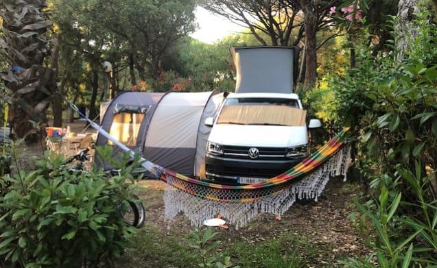 Volkswagen California Beach 2018 – Volkswagen California Beach 2018 te huur
