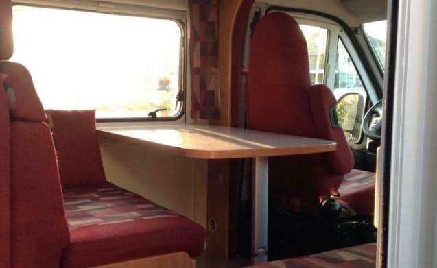 Camper lussuoso, spazioso e accogliente per 4 persone - Fiat Burstner
