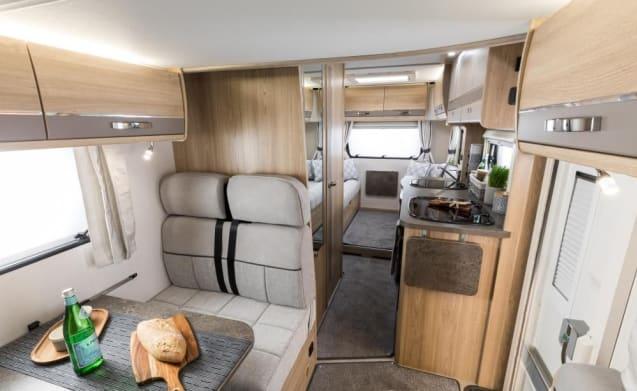 Peggy – Elddis Autoquest 196. New 2019 luxury 6 berth motorhome. Known as ''Peggy''