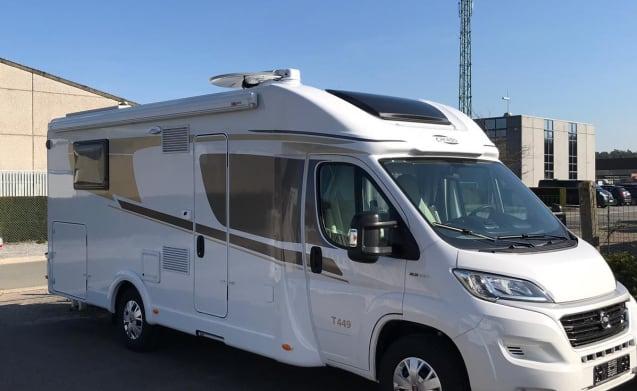 T 449 – Carado T449 2019